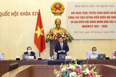 越南国会主席王廷惠主持全国换届选举工作视频会议
