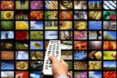 为海外越南人提供网络广播电视服务