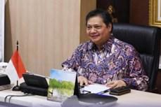印度尼西亚注重在G20主席年内克服新冠肺炎疫情影响的目标