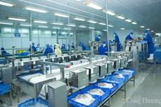 越南向签署自贸协定的市场发放42万份原产地证