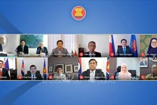 东盟—挪威跨行业联合合作委员会第六次会议以视频形式举行