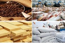 农林水产品出口:实现新突破
