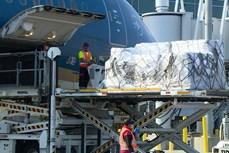 超过6.2吨医疗物资首次从美国直达越南