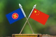 东盟—中国青年主播创造营在广西开营