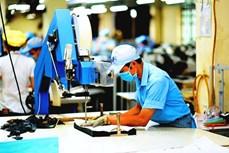 生产和出口活动可能尽快恢复