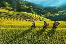 少数民族地区和山区经济发展:将科技是为重要基础
