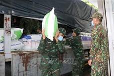 越南政府决定为嘉莱、平福和朔庄三省发放救济大米和其它物资