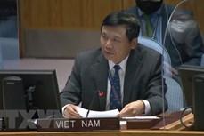 越南与联合国安理会:越南支持哥伦比亚和平与民族和解进程
