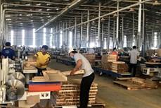 EVFTA为促进平阳省木材加工行业强劲发展给予巨大动力