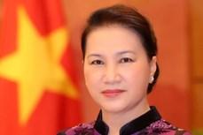 国会主席阮氏金银:进一步提高国会工作质效