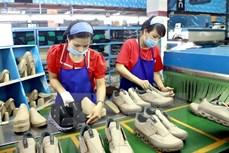 越南宏观经济保持稳定 力争实现增长目标