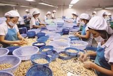 2021年前2月美国是越南农产品的最大出口市场