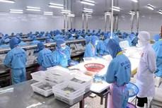 出口到欧盟的越南货物享受EVFTA的优惠税率
