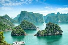 广宁省为迎接游客重返旅游做好两手准备
