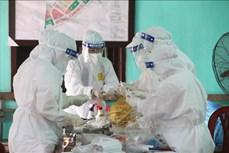 新冠肺炎疫情:全国新增37例本地病例 超过22560人完成2剂疫苗接种