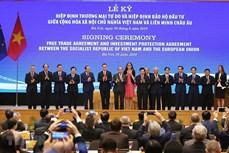 越南-欧盟贸易关系:逐步走向纵深