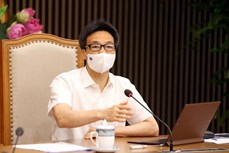 武德儋:全力以赴 切实做好北宁、北江两省工业区疫情防控工作