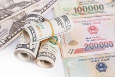 5月17日上午越盾对美元汇率中间价上调16越盾