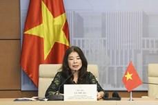 越南出席各国议会联盟民主与人权常设委员会视频会议