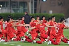 越南与阿联酋展开深度合作 推动足球发展