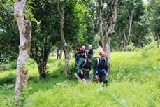 Sản phẩm OCOP tạo sức bật cho du lịch phát triển ở huyện Bắc Hà