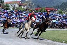 Vòng chung kết Giải đua ngựa truyền thống Bắc Hà 2020