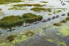 Ngăn chặn đà suy giảm đa dạng sinh học ở Việt Nam (Bài 2)