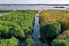 Ngăn chặn đà suy giảm đa dạng sinh học ở Việt Nam (Bài 1)