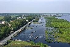 Ngăn chặn đà suy giảm đa dạng sinh học ở Việt Nam (Bài cuối)