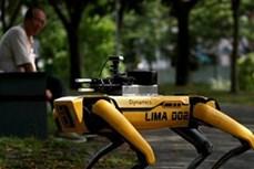 Trung Quốc phát triển xe bay tự hành có thể giao hàng hoặc làm nhiệm vụ cứu hộ