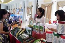 Bàn giải pháp kích cầu du lịch Lai Châu