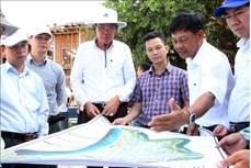 Ninh Thuận nhiều giải pháp phát triển kinh tế trong giai đoạn mới