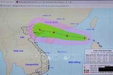 """Ứng phó bão số 4 : Bão, mưa lớn và động đất tạo đang tạo ra """"tổ hợp bất lợi"""" cần ứng phó khẩn cấp"""