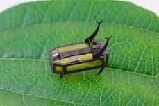Chế tạo robot siêu nhỏ sử dụng nhiên liệu lỏng