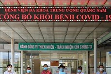 Dịch COVID-19: Thêm 5 bệnh nhân ở Quảng Nam và Đắk Lắk được công bố khỏi bệnh