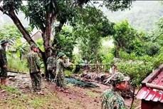 Ảnh hưởng bão số 5: Tỉnh Quảng Bình có 2 người bị thương nặng do sự cố trong cơn bão