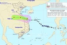 Ứng phó với bão số 5: Quảng Trị huy động lực lượng tìm kiếm người bị lũ cuốn mất tích