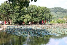 Diện mạo mới của Khu Di tích Quốc gia đặc biệt Côn Sơn - Kiếp Bạc