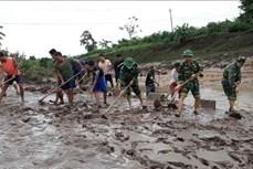 Hội Chữ thập đỏ Việt Nam hỗ trợ người dân Quảng Trị, Thừa Thiên Huế khắc phục thiệt hại do bão số 5
