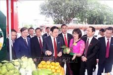 Xây dựng tỉnh Sơn La phát triển xanh, nhanh và bền vững