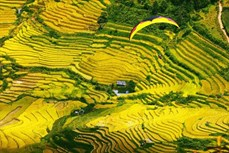 Du lịch ở huyện Mù Cang Chải sôi động trở lại
