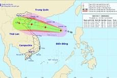 Áp thấp nhiệt đới mạnh lên thành bão - cơn bão số 7 (NANGKA)