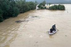 Cách xử lý nguồn nước sau lũ lụt