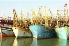 Ứng phó với bão số 9: Quảng Nam nghiêm cấm tàu thuyền ra khơi; khẩn trương chằng chống nhà cửa, trụ sở làm việc