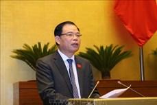 Bộ trưởng Nguyễn Xuân Cường: Từng bước phục hồi diện tích rừng tự nhiên bị tàn phá sau chiến tranh