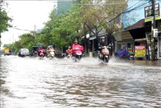 Quảng Ngãi sơ tán 800 hộ dân ra khỏi vùng bị ảnh hưởng bởi nước lũ dâng cao