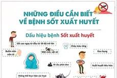 Kon Tum nỗ lực khống chế dịch bệnh sốt xuất huyết