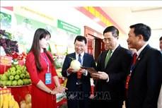 Bắc Giang: Ứng dụng tiến bộ khoa học công nghệ thúc đẩy phát triển vùng nông thôn, miền núi