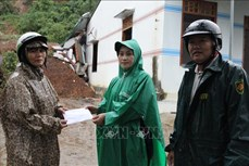 Đắk Lắk: Mưa lớn làm sạt trượt núi, nhiều nhà bị sập