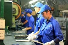 Ban hành Nghị định 145 quy định về chăm sóc sức khỏe đối với lao động nữ